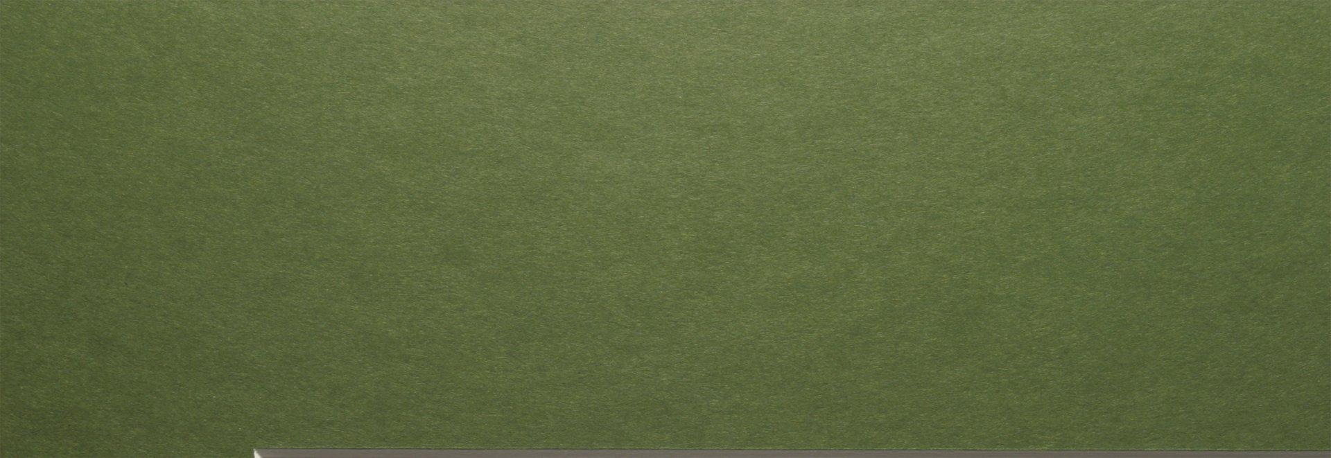 GSRM 1045 Grass Green